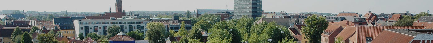 Lejebolig Odense